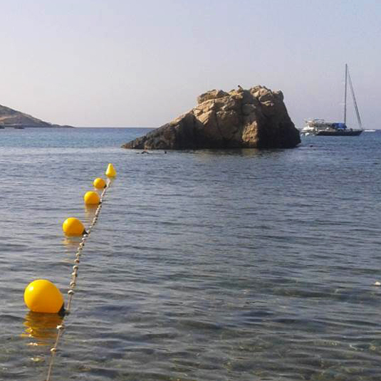 Along the Mediterranean, scientists have spotted huge, mile-long blooms of jellyfish, sometimes with 30 to 40 animals per square yard of sea. World-famous beach destinations like Ibiza have been affected.