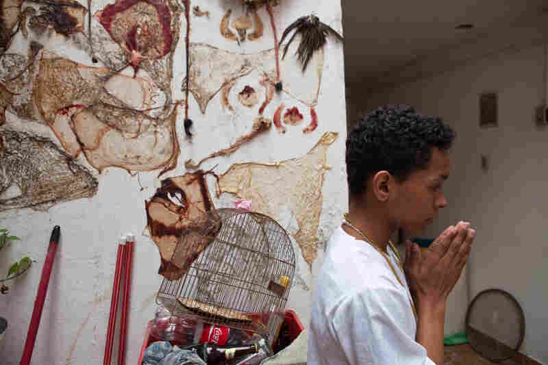A young practitioner prepares for the party near a wall decorated with sacrificed animal skin and entrails. The animals were ritualistically sacrificed the day before and will be served at the party.