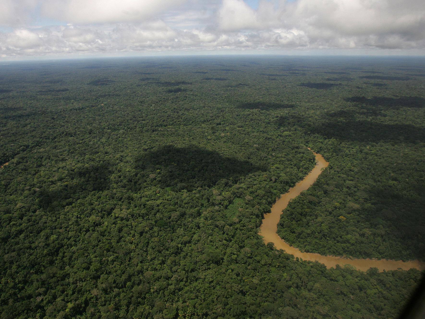 Ecuador To World: Pay Up To Save The Rainforest. World To Ecuador: Meh.