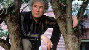 Poet Seamus Heaney, who won the Nobel Prize in literature in 1995, is seen here in a file photo from 1991, when he was a professor at Harvard. Heaney has died at age 74.