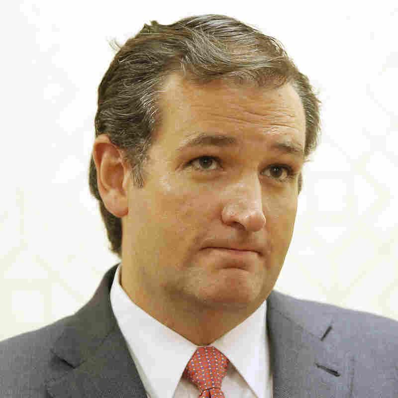 Sen. Ted Cruz, R-Texas, speaks Aug. 20 at a Dallas press conference.