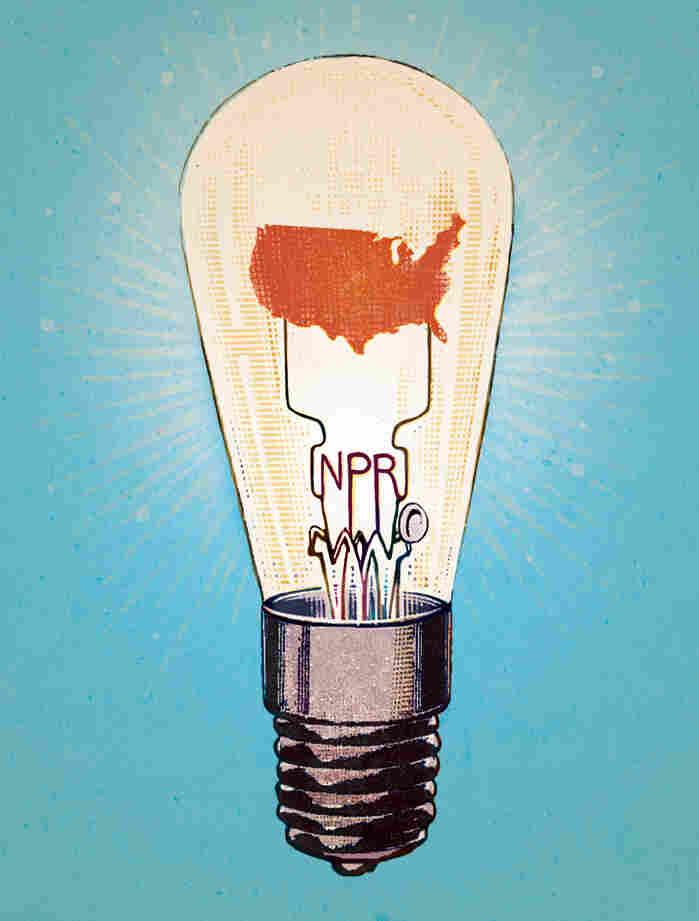 Leigh Guldig's illustration for the 2014 NPR Wall Calendar.