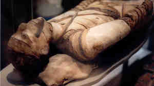 Signs of tuberculosis have been found in ancient Egyptian mummies, such as this one in London's British Museum.
