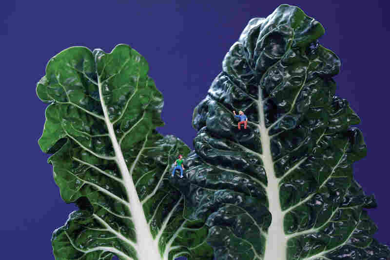 """Swiss Chard Couple: """"Grace and Kat bonded over their mutual love of high places."""""""