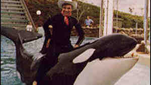 Cal Worthington poses with Shamu during one of his trademark used-car commercials.