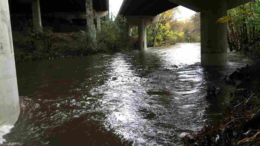 Gwynns Falls runs beneath Interstate 95 at Carroll Park in Baltimore. The chemistry of this river, like many across the country, is changing.