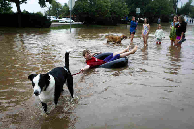 Nicky Toor is pulled by his dog, Chaco, down a flooded street in Boulder.