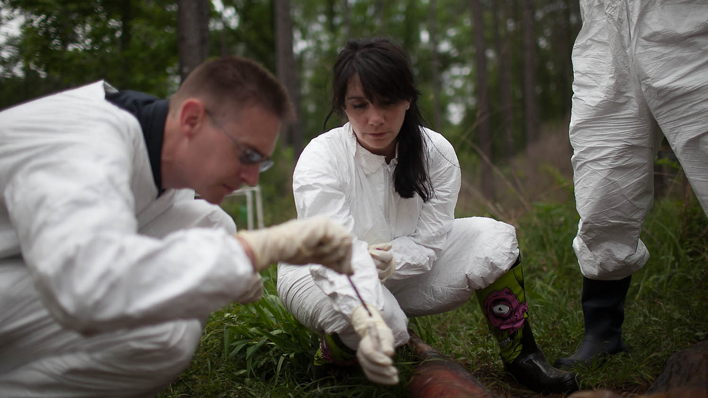 Could Detectives Use Microbes To Solve Murders? : Shots - Health ...