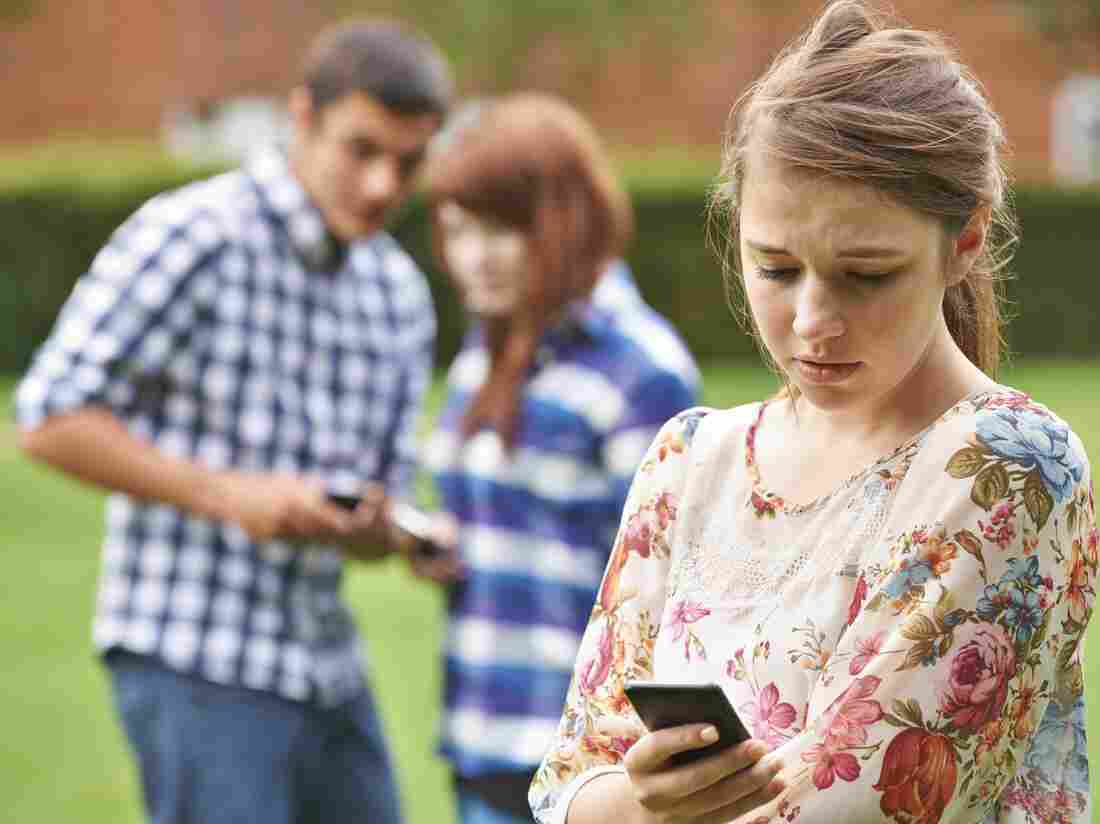 Cyberbullies can reach victims around the clock – before school, during school, even while lying in bed at night. And in public online spaces, everybody else finds out about it.