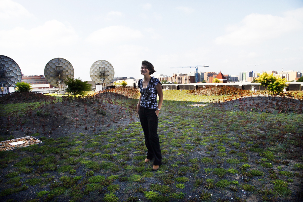 The green roof helps with storm water management and water quality by filtering rainwater, and it helps mitigate the urban heat island effect by providing more green space and contributing to a cooler city at large, says Erin Stamer. She is with the Prospect Waterproofing Company, the group that installed and cares for the green roof at NPR.