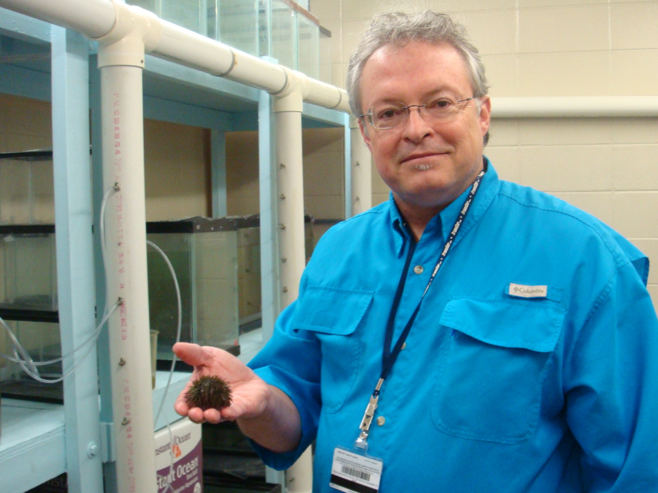 Stephen Watts, a biology professor at the University of Alabama at Birmingham, has been growing sea urchins in a lab for nearly two decades as a way to address overharvesting.