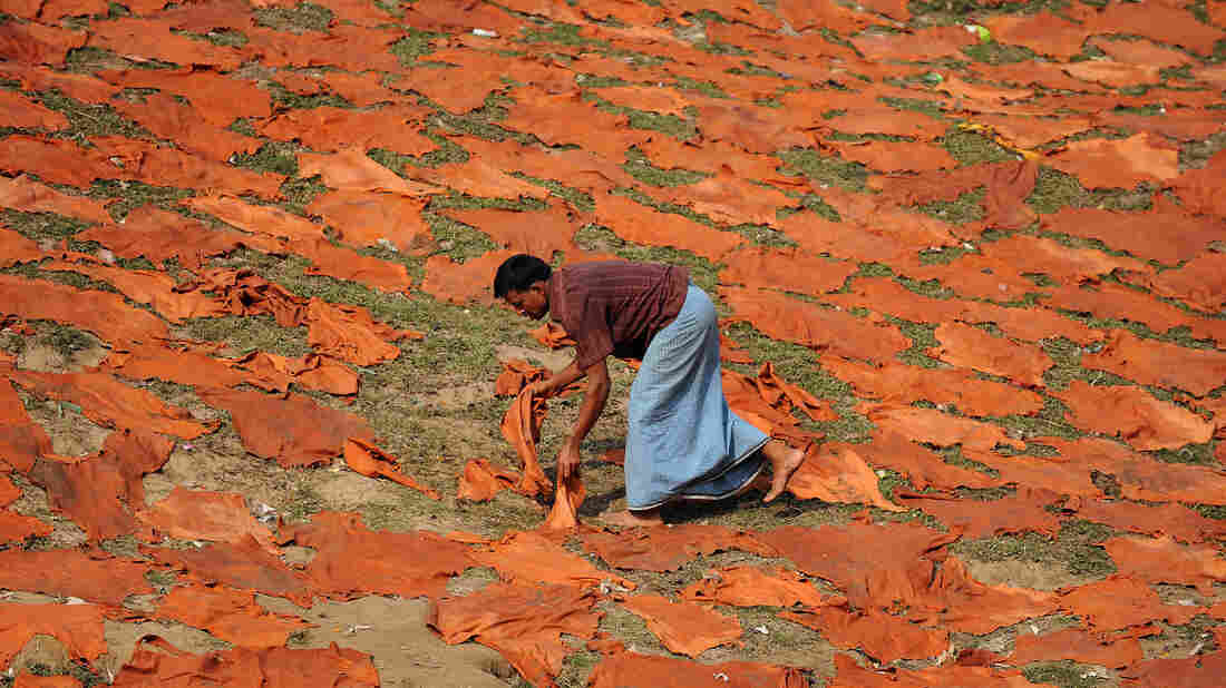 A Bangladeshi worker dries leather hides on the banks o