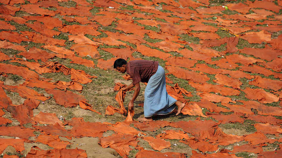 A Bangladeshi worker dries leather hides on the banks of the Buriganga river in Dhaka. About 10 percent of tannery workers in the region suffer from rheumatic fever.
