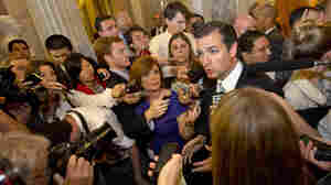 Republican Sen. Ted Cruz speaks to the media Wednesday after delivering a marathon Senate floor speech.