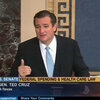 Sen. Ted Cruz's anti-Obamacare strategy seemed to fall flat Tuesday with many of his fellow Senate Republicans. They urged him to back down out of concern over a possible government shutdown next week.
