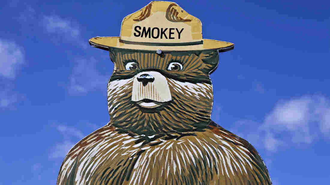 Smokey Bear fire prevention messages might not always be the best thing for forests.