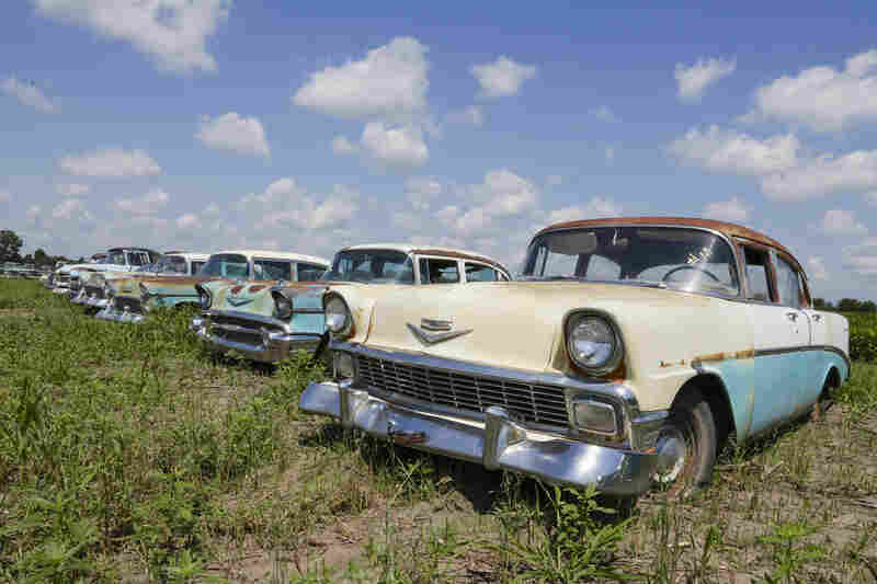 A photo from Aug. 12 shows vintage Chevrolet sedans lined up in a field near the former Lambrecht Chevrolet car dealership in Pierce, Neb. In September, bidders from at least a dozen countries and all 50 U.S. states converged on Pierce for a two-day auction of about 500 old cars and trucks.
