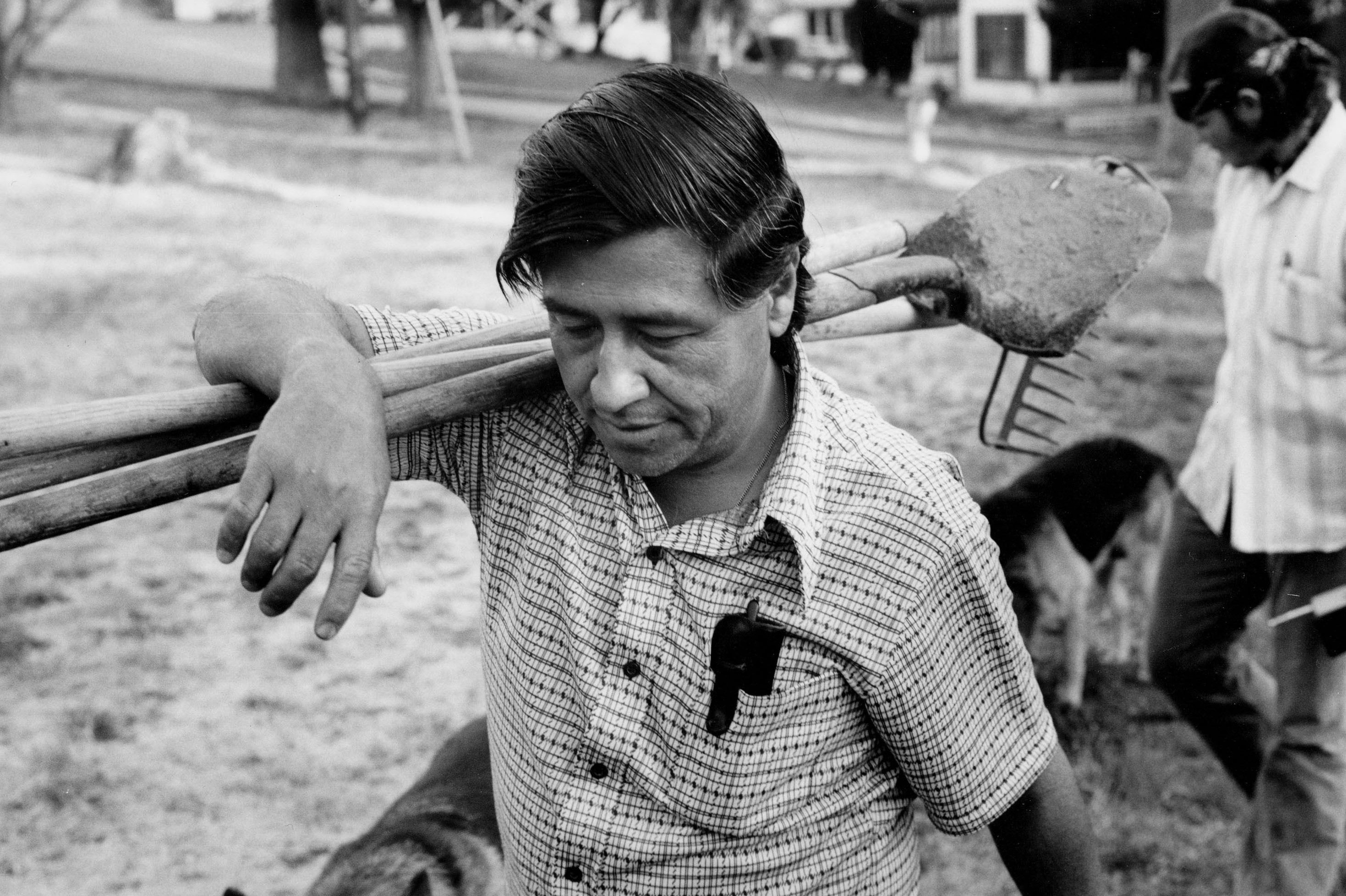 Cesar Chavez of the United Farm Workers Union, April 1974, California.