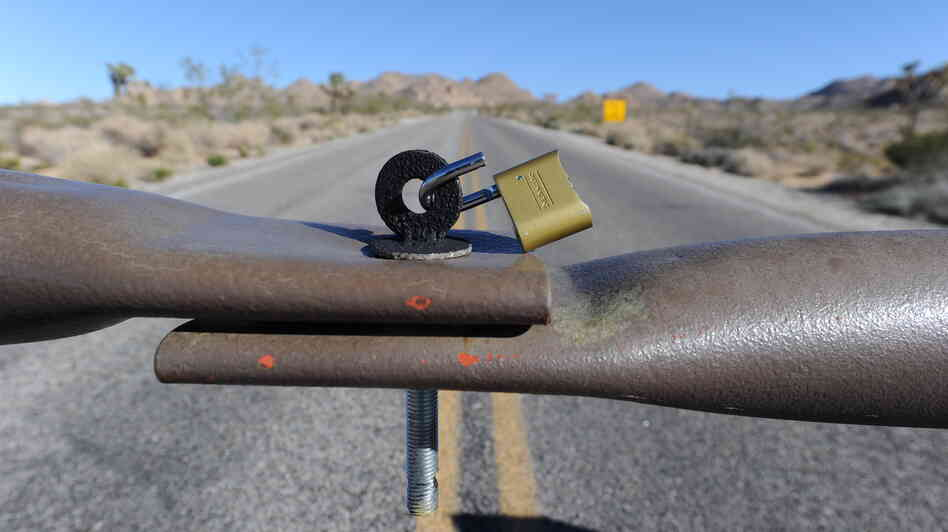A gate leading into the Joshua Tree National Park California is latched (though not locked) because of the partial government shutdown. Though national parks are technically closed, national forests remain open — they're too large to close.