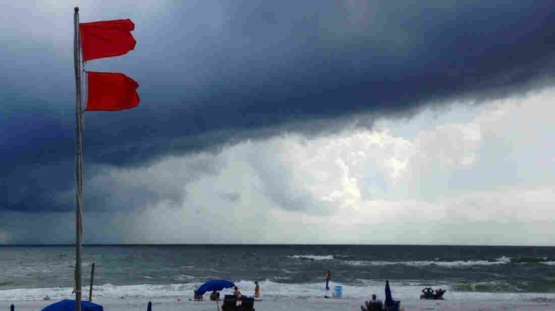 Red flags warn swimmers to stay out of the Gulf of Mexico at Gulf Shores, Ala., on Saturday.
