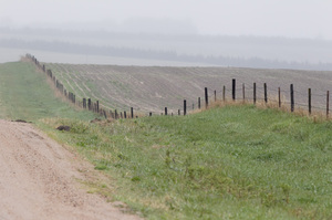 A road near the proposed route for the Keystone XL pipeline several miles north of Neligh, Neb. After its original route through the Nebraska sand hills was blocked, Calgary-based TransCanada submitted to Nebraska environmental officials a preferred alternative route that runs north of Neligh.