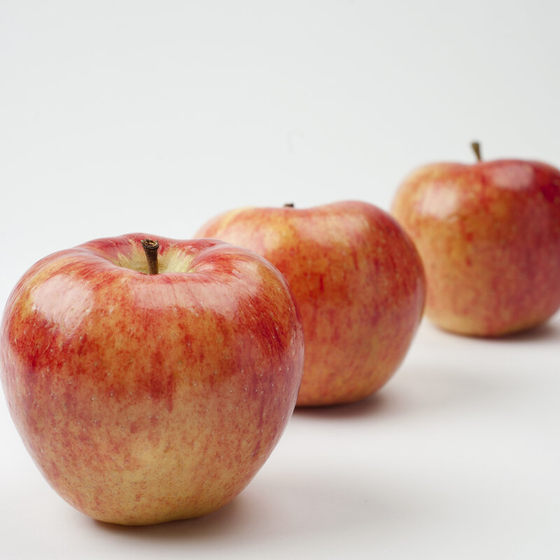crunchy how to engineer a better apple