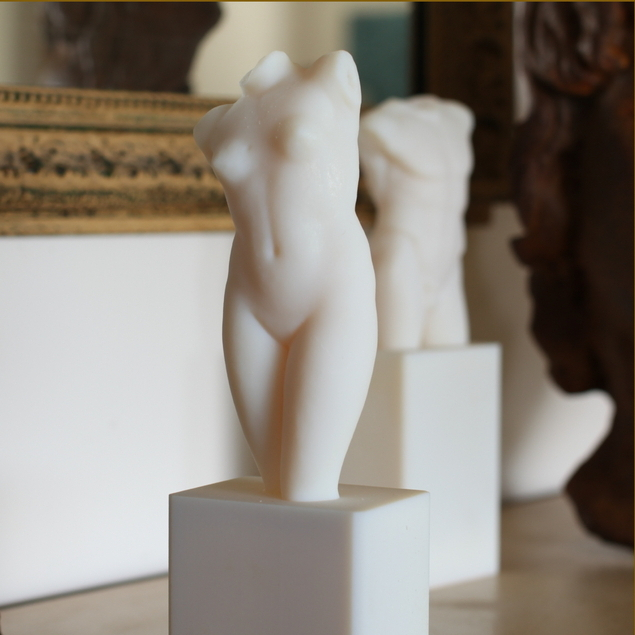 These torsos were printed in layers of biodegradable plastic. The original sculptures reside at the Louvre in Paris.