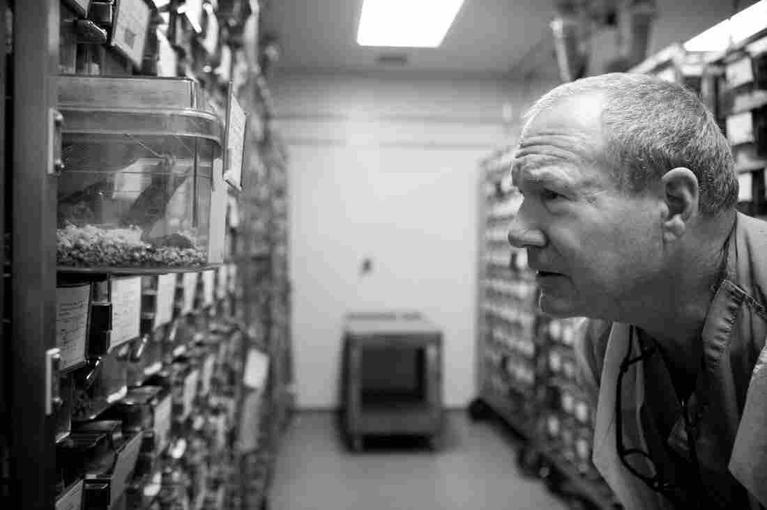 Bob Adams is a lab animal veterinarian at Johns Hopkins University.