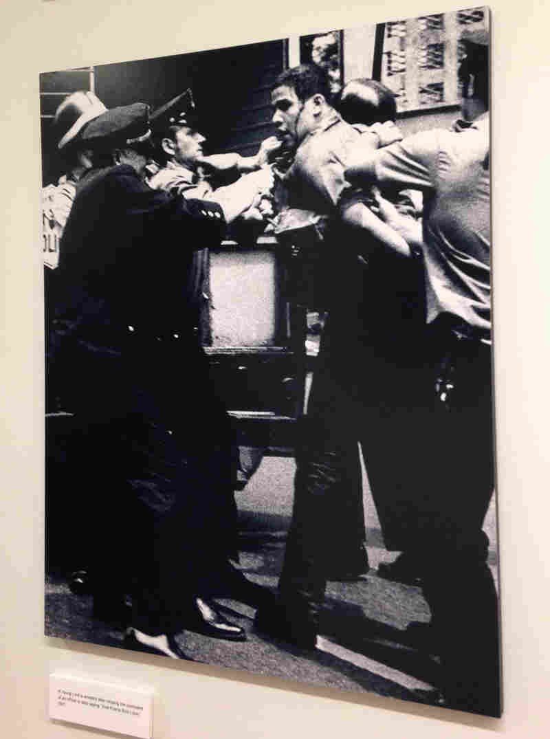 A member of the Young Lords with blood on his face is arrested by police. Bolivar Arellano took this photo, now on display at Columbia University, in 1971.