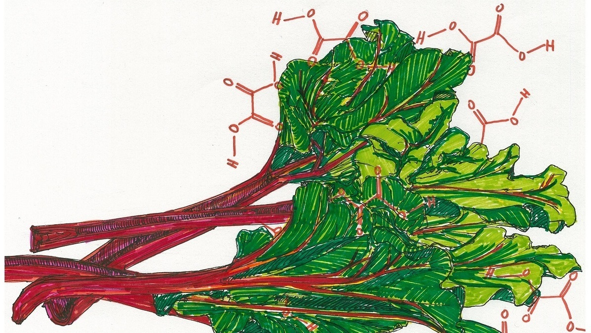 When Edible Plants Turn Their Defenses On Us The Salt Npr Strawberry Plant Diagram