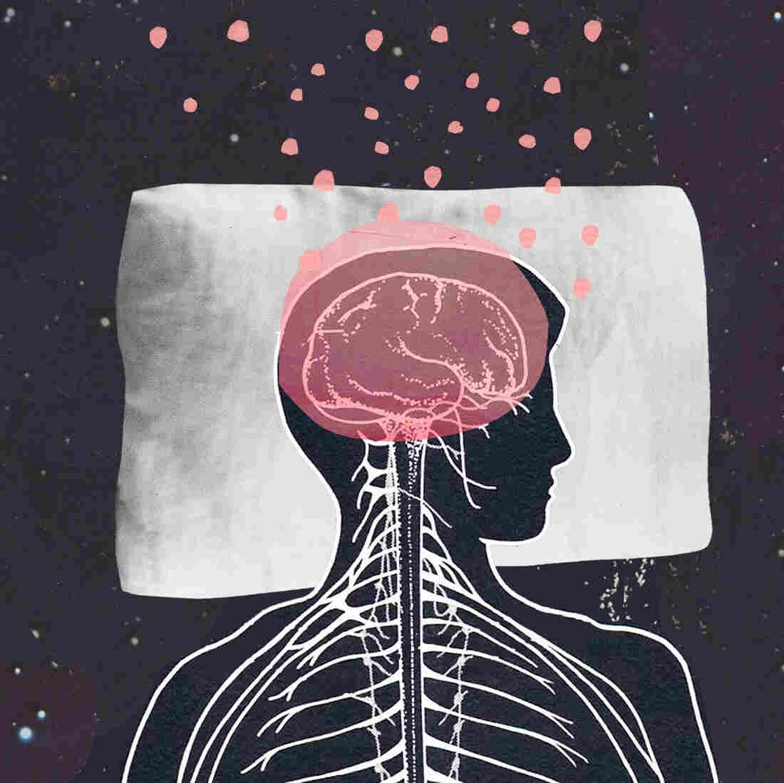 Brains Sweep Themselves Clean Of Toxins During Sleep