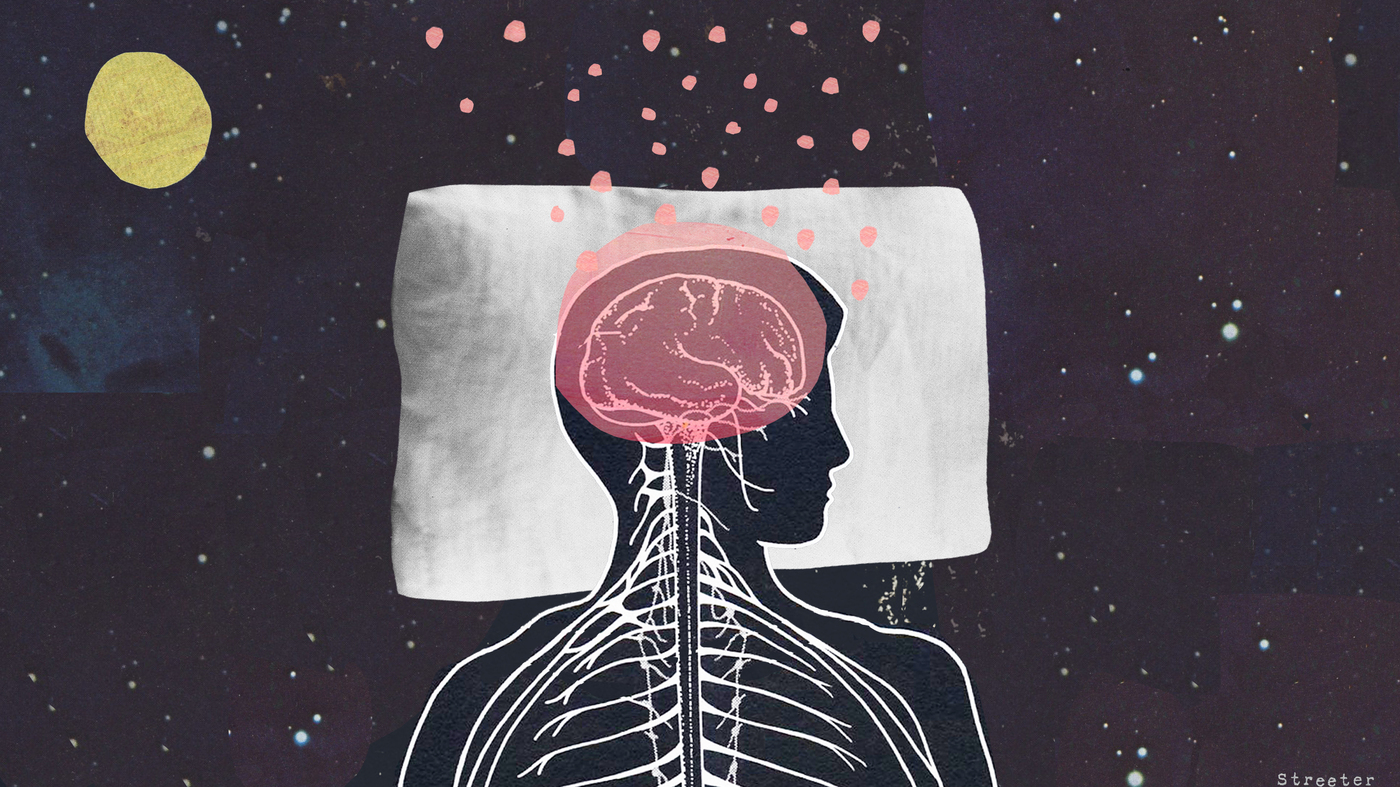 Brains Sweep Themselves Clean Of Toxins During Sleep : Shots ...