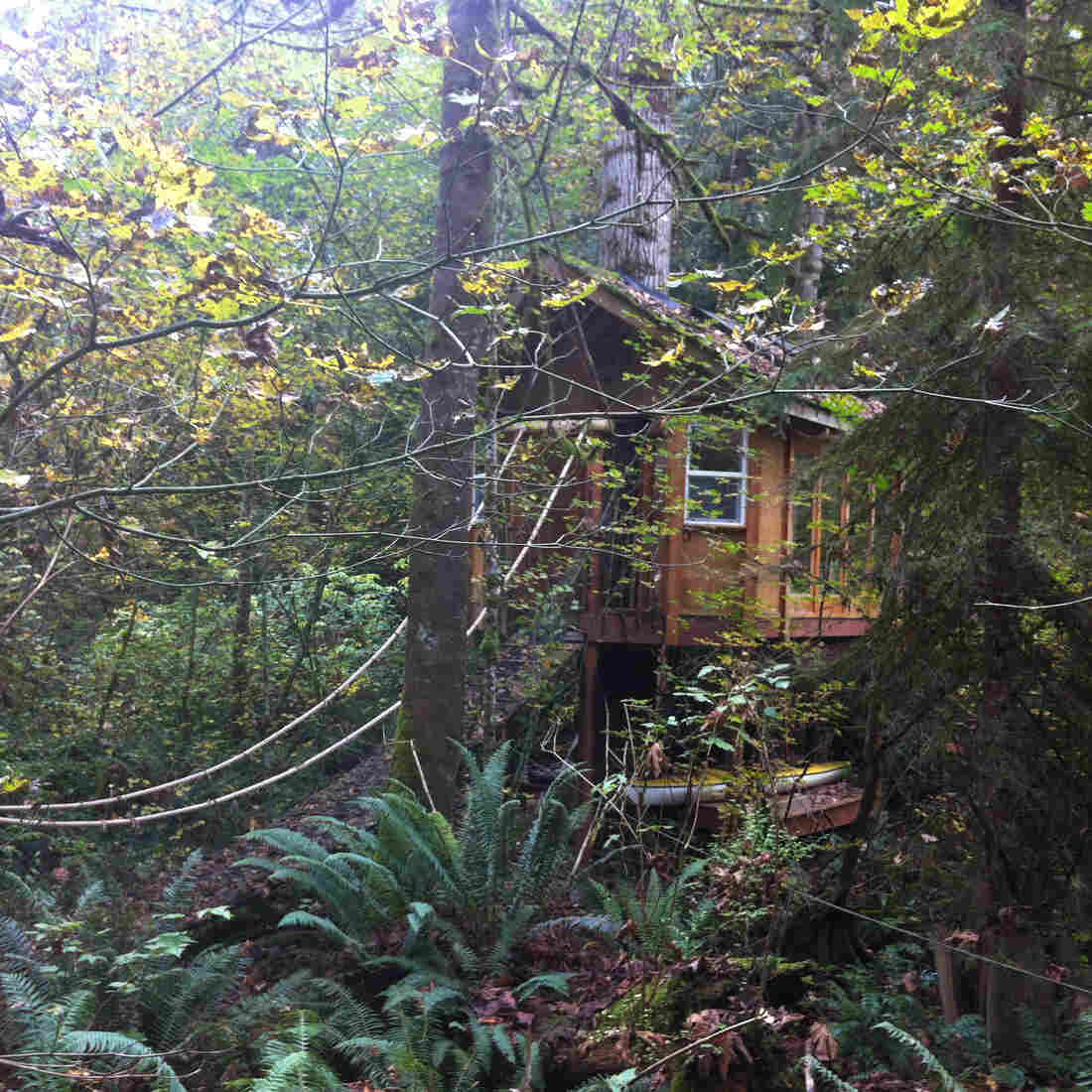 The reSTART center for Internet addiction is in the woods outside Seattle. The initial, inpatient part of the program is held on a property that has a treehouse and a garden.