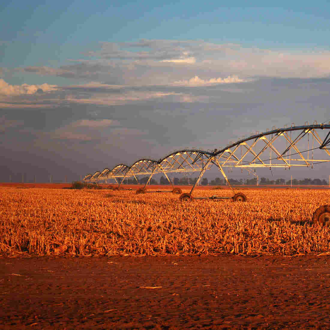 Kansas Farmers Commit To Taking Less Water From The Ground
