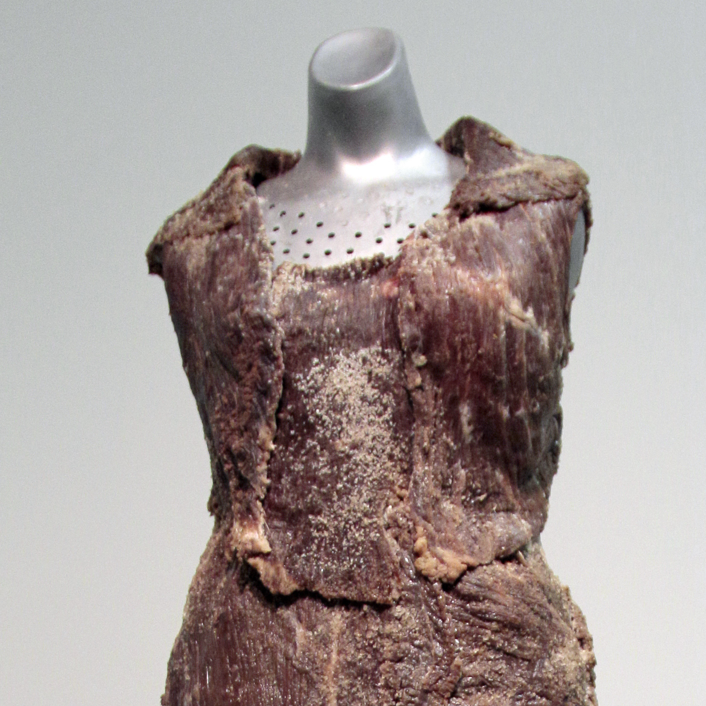 Vanitas: Flesh Dress for an Albino Anorectic, by the artist Jana Sterbak