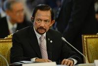 Sultan of Brunei Hassanal Bolkiah attends the first working meeting of the G20 summit in September in St. Petersburg, Russia.