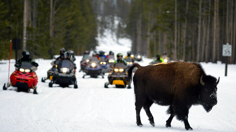 15 Years Of Wrangling Over Yellowstone Snowmobiles Ends Npr