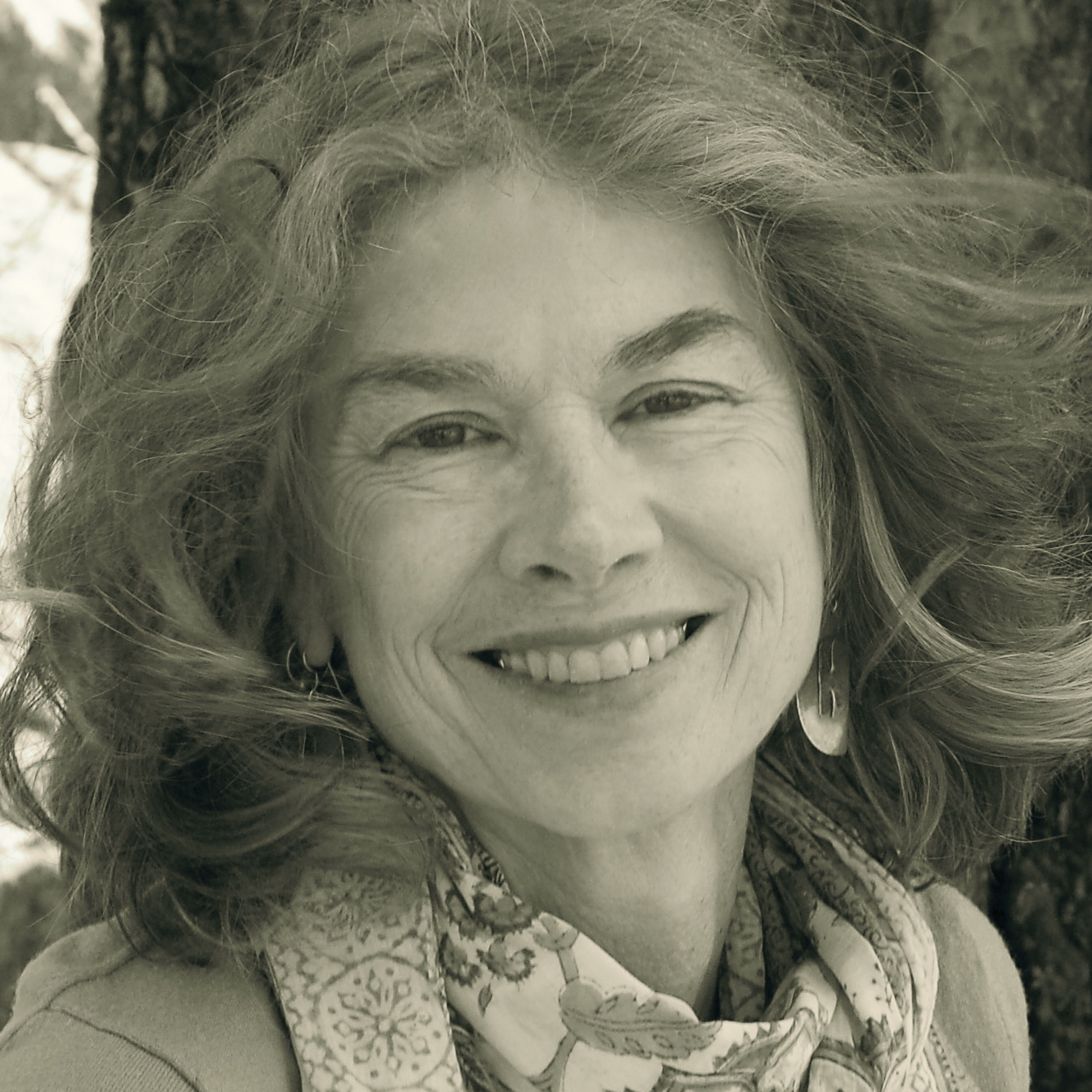 The author of Loose Sugar and Bright Existence, Brenda Hillman holds the Olivia Filippi Chair in Poetry at Saint Mary's College of California.