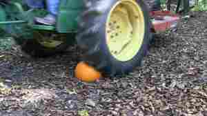 "When a tractor tire meets a pumpkin, the gourd doesn't win. That's one of the ""pumpkin killing methods"" in this year's video from ""Hickok45."""