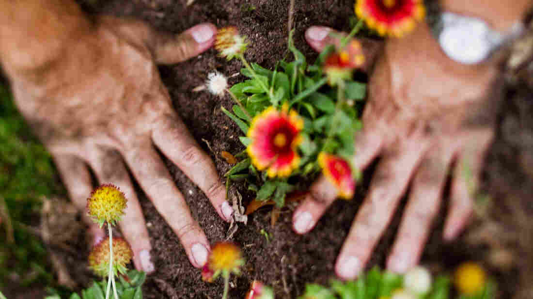 Spiffing up the garden may also make your cardiovascular risk profile look better, too.