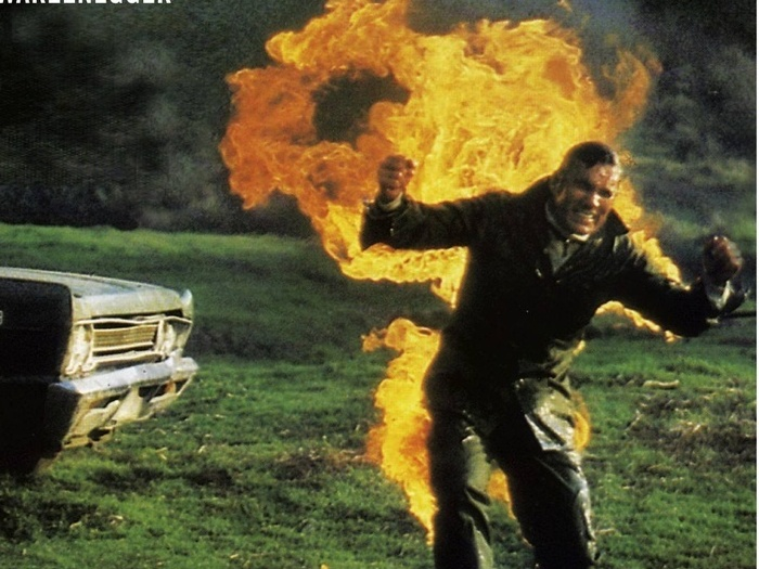 the story behind the stunts remembering hollywood s hal