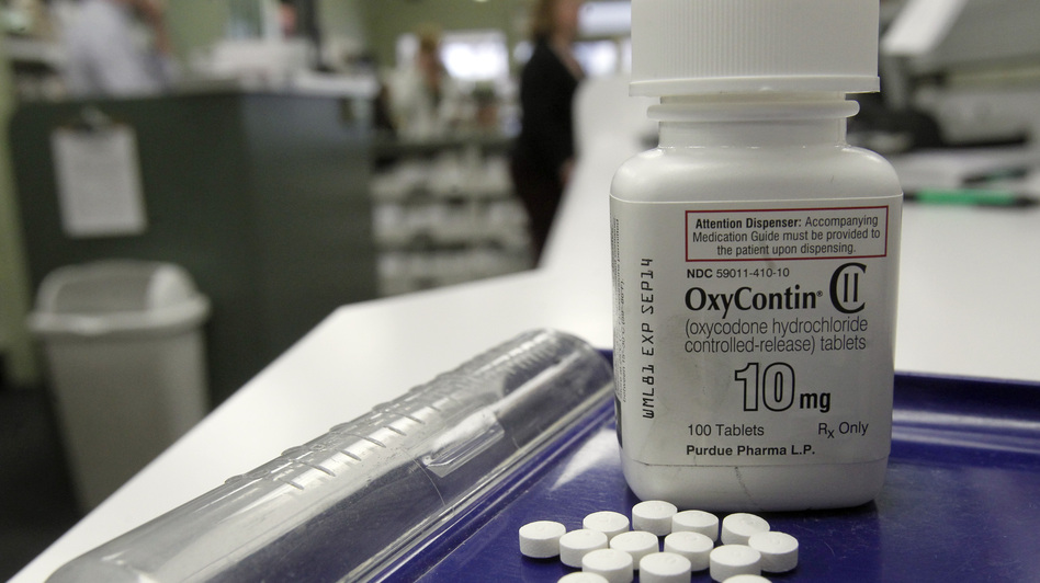 The amount of prescription painkillers sold to pharmacies, hospitals and doctors' offices quadrupled between 1999 and 2010, according to the Centers for Disease Control and Prevention. (AP)