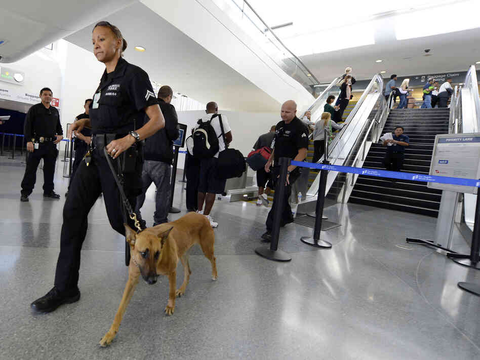 On patrol: A Los Angeles Police Department officer and her dog w