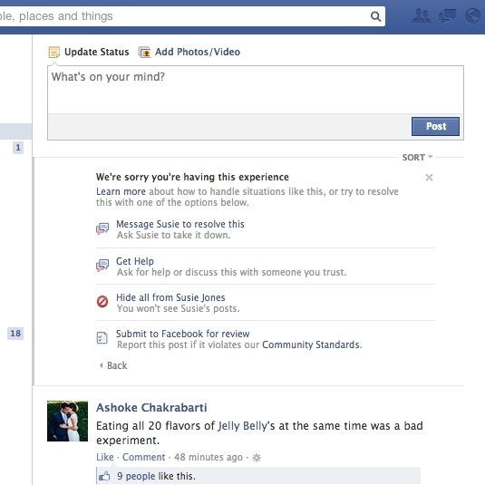 An example of the reporting tool that Facebook is in the process of making available to its users.