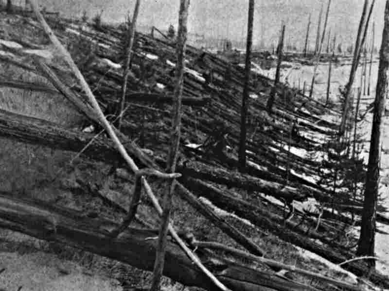 In 1927, Leonid Kulik led an expedition into Siberia to investigate the meteor explosion of 1908. He didn't find any meteorites, but he did see a lot of knocked-down trees.