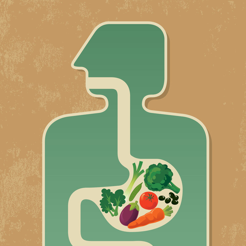 Gut Bacteria Might Guide Workings Of >> Gut Bacteria Might Guide The Workings Of Our Minds Shots Health