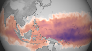 This map from the NOAA Environmental Visualization Laboratory shows the amount of heat energy available to Typhoon Haiyan between Oct. 28 and Nov. 3. Darker purple indicates more available energy. Typhoons gain their strength by drawing heat out of the ocean. The path of the storm is marked with the black line in the center of the image.