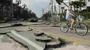 A cyclist rides past buckled asphalt in Key West, Fla., after Hurricane Wilma in 2005. Key West experienced widespread flooding with the storm surge.