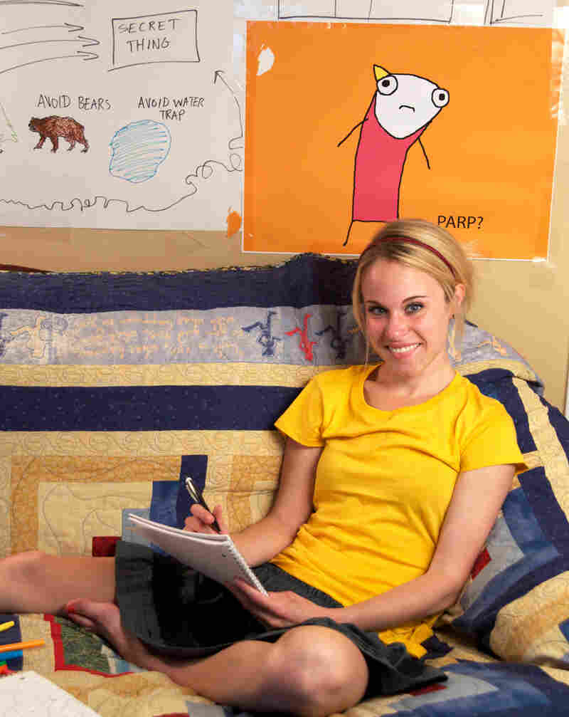 Hyperbole and a Half is Allie Brosh's first book. In it, as on her blog, she draws herself with a tube body and a yellow, triangle ponytail.