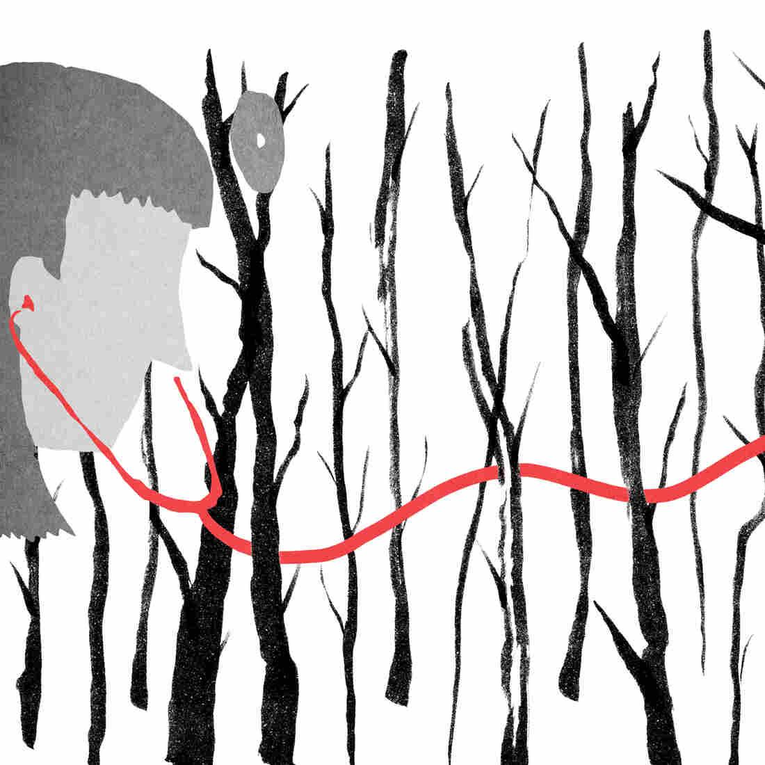 Illustration by Daniel Horowitz for NPR
